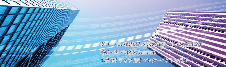 voicetec_top